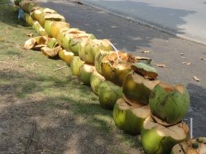 Streetside coconuts