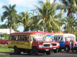 Buses, Samoa
