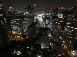 View from the Park Hyatt hotel in Tokyo