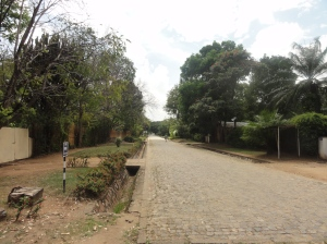 A serene street in the expat suburb of Rohero