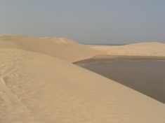 The Qatari desert