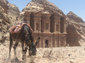 Definitely planning on returning to Jordan one day to visit Petra