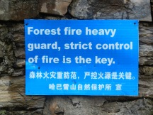 Don't start fires in the forest?